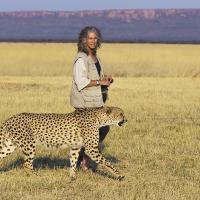 Репортаж: в Намибии существует ферма, где спасают гепардов