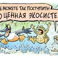 Комикс к празднику: Всемирному дню водно-болотных угодий — 20 лет!