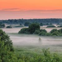Что будет с Полесьем? Судьбу региона обсуждали в Минске более 350 учёных из 4 стран