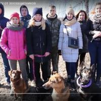 Зоозащитники Беларуси обратились к Президенту