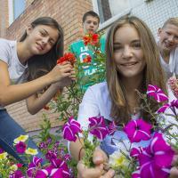Конкурс на лучшее благоустройство и озеленение проходит в Минске