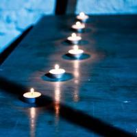 Как прошёл «Час Земли» в Беларуси