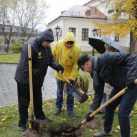 «Я не дам в обиду эту усадьбу никому». Как посадка деревьев помогает Дому Ваньковичей бороться с засильем ресторанов