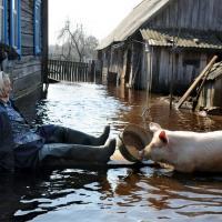 Изменение климата в беларусской глубинке: регионы адаптируются по обстоятельствам, а не по стратегии