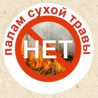 Противодействие пожарам: экологи призывают не жечь сухую траву!
