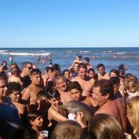 В Аргентине любители селфи до смерти замучили дельфина