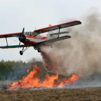 Лесная авиация патрулирует беларусские леса с воздуха