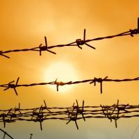 Количество арестованных экологов достигло 6 человек. Требуем немедленно их освободить!