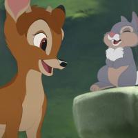 В США суд приговорил браконьера к году тюрьмы и ежемесячному просмотру мультфильма «Бэмби»