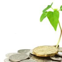 Этический кооперативный банк может стать новым способом финансирования экопроектов