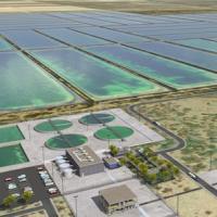 Концепты, которые могут стать будущим возобновляемой энергетики