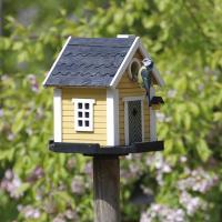 К Международному дню птиц в Витебске устроили конкурс на лучший домик для пернатых