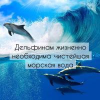 8 фактов, которые заставят вас по-новому взглянуть на дельфинарии