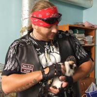 Как минские байкеры наломали дров в витебском приюте для бездомных животных (фото)