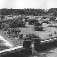 История Минского ботсада: огород немецких солдат, сталинские репрессии и научная деятельность