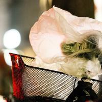 Грузия вводит запрет на пластиковые пакеты
