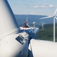 5 самых востребованных профессий в зеленой энергетике