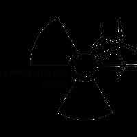 «Чернобыльский шлях превратился в ритуальную оппозиционную акцию с размытым посылом и непонятными целями»
