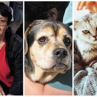 Разговор с экзистенциальным психологом: «Кошка вас не затроллит, собака фейка не создаст!..»