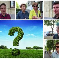 «А у нас они есть? Вода чистая, природа красивая»: жители Минска об экологических проблемах  (видео)