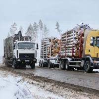 Убирая бурелом, разбили дороги на Минщине — ущерб на миллионы рублей