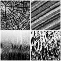 Экология и искусство: Природные «МСтруктуры» Михаила Гаруса