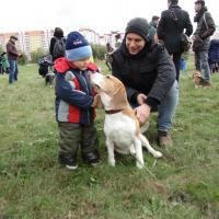 #Собакотерапия в Гомеле: передозировка счастьем для тех, у кого нет собаки (фото, видео)