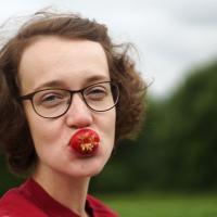 Одну в ведро, три в рот: как мы органическую клубнику собирали (фото, видео)