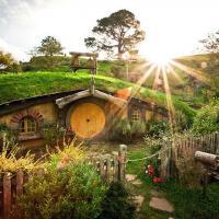 Строительство + Экология = Экодом. Какое оно, жильё будущего?