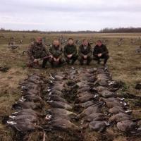 Петиция АПБ: Запретить весеннюю охоту на птиц!