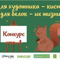 Творческий конкурс «Для художника — кисти, для белок — жизни!»