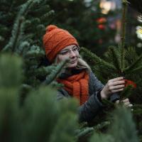 Ёлочные базары заработают  21 декабря: где купить ёлку в Минске?