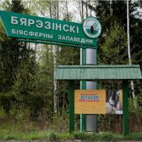 Экотуристы оценили новые экскурсии в дикую природу Березинского заповедника