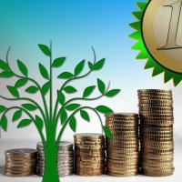 От 7 до 45 тысяч евро: на какие «зелёные» проекты потратят деньги 10 инициатив из Беларуси?
