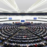 Птиц взяли под защиту: Европейский парламент проголосовал за природу