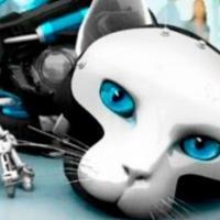Зоороботы: пять изобретений, имитирующих физиологию животных