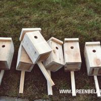В заказнике «Озёры» к орнитологии приобщили школьников и смастерили домики для птиц