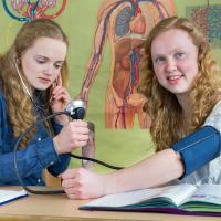 Бесплатный учебный модуль «Альтернативы экспериментам на животными» для учащихся естественно-научного профиля
