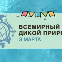Ко Всемирному дню дикой природы — главные события в природоохранной сфере Беларуси