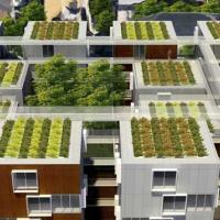 Все крыши Франции станут «зелёными» — 7 аргументов «за»