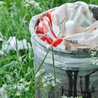 Прямиком на помойку: беларусы ежегодно выбрасывают 450 000 тонн еды