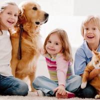 В Пинске начала работу новая зоозащитная организация «Преданность другу»