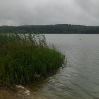 Водохранилище Гать: вообще, плавать – полезно, но здесь лучше не надо