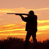 Охотничий туризм в Беларуси. Иностранцы и охотхозяйства довольны