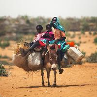 Всемирный банк: «140 миллионов человек в скором времени могут мигрировать из-за изменения климата»