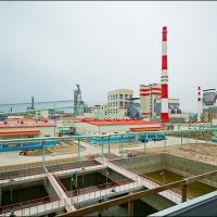 Завод белёной целлюлозы в Светлогорске: люди протестуют, а экологи на госслужбе называют устаревшие технологии наилучшими