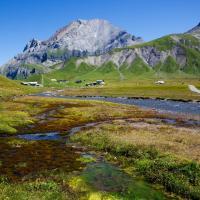 Микропластик есть даже в почвах Швейцарских гор