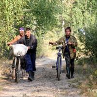 «За клюквой ходят даже милиционеры после дежурства». Как болото людей кормит