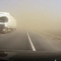 «Количество пыльных бурь у нас может увеличиваться». Эколог рассказала об изменении  климата в Беларуси