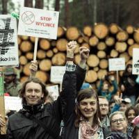 Комитет ЮНЕСКО встал на защиту Беловежской пущи